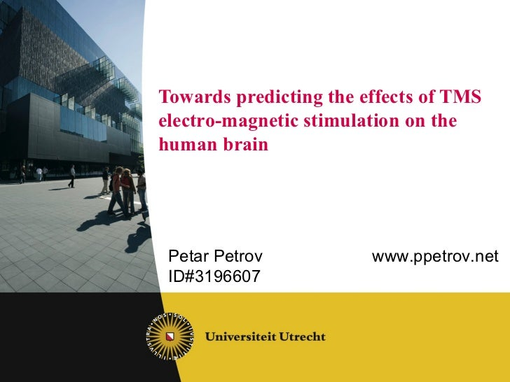 Towards predicting the effects of TMS  electro-magnetic stimulation on the human brain Petar Petrov www.ppetrov.net ID#319...