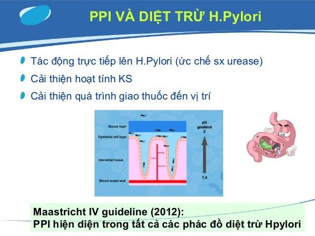 Maastricht IV guideline (2012)