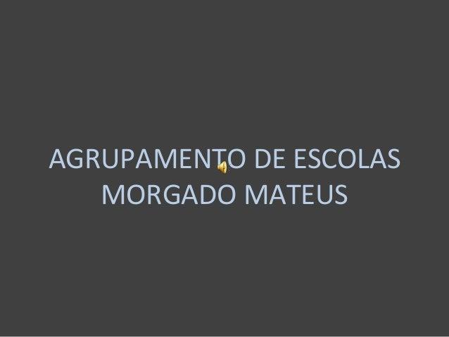 AGRUPAMENTO DE ESCOLAS MORGADO MATEUS