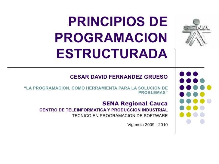 """PRINCIPIOS DE PROGRAMACION ESTRUCTURADA CESAR DAVID FERNANDEZ GRUESO """"LA PROGRAMACION, COMO HERRAMIENTA PARA LA SOLUCION D..."""