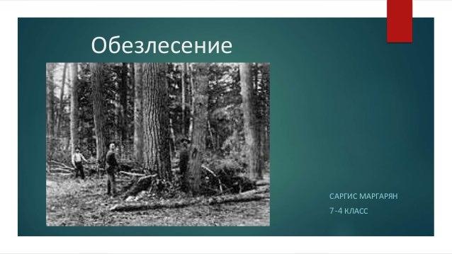 Обезлесение САРГИС МАРГАРЯН 7-4 КЛАСС
