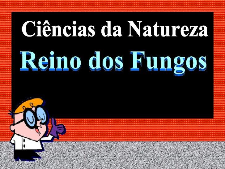 Ciências da Natureza Reino dos Fungos