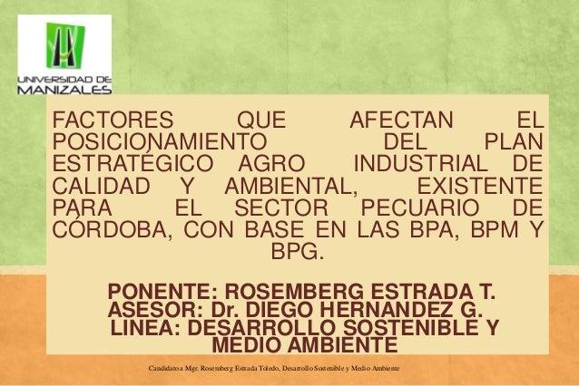 FACTORES QUE AFECTAN EL POSICIONAMIENTO DEL PLAN ESTRATÉGICO AGRO INDUSTRIAL DE CALIDAD Y AMBIENTAL, EXISTENTE PARA EL SEC...