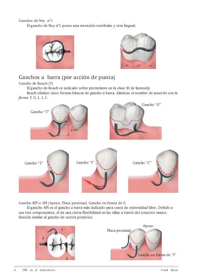 equipoise dental lab