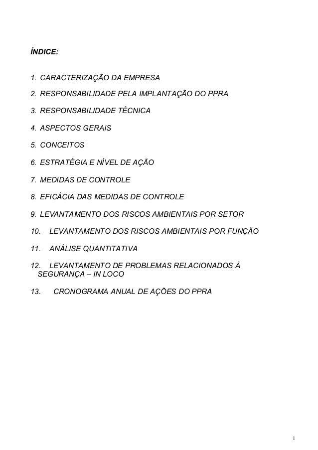 ÍNDICE: 1. CARACTERIZAÇÃO DA EMPRESA 2. RESPONSABILIDADE PELA IMPLANTAÇÃO DO PPRA 3. RESPONSABILIDADE TÉCNICA 4. ASPECTOS ...