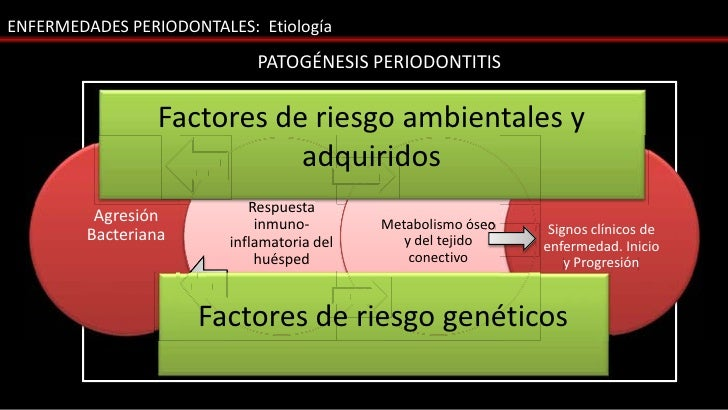 ENFERMEDADES PERIODONTALES: Etiología                                      PATOGÉNESIS PERIODONTITIS                  Fact...