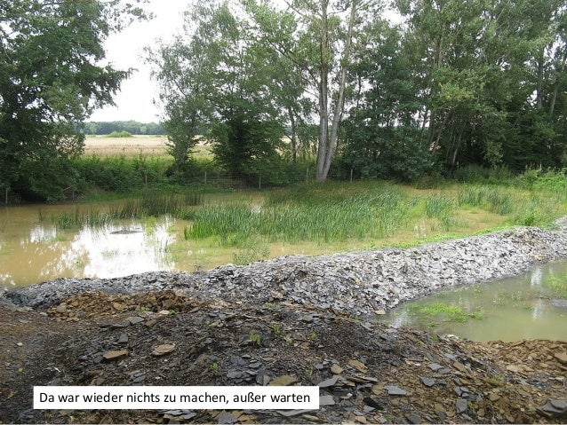 Gleichzeitig begann der Wasserstand wieder ein wenig zu sinken