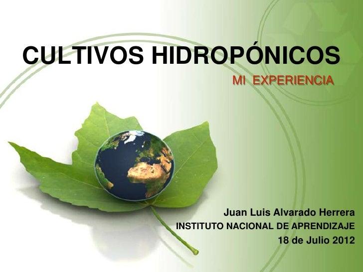 CULTIVOS HIDROPÓNICOS                    MI EXPERIENCIA                  Juan Luis Alvarado Herrera          INSTITUTO NAC...