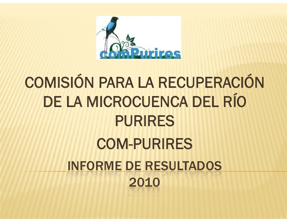 COMISIÓN PARA LA RECUPERACIÓN  DE LA MICROCUENCA DEL RÍO           PURIRES         COM-PURIRES     INFORME DE RESULTADOS  ...