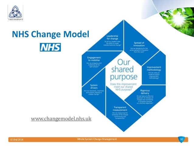 essays on change management in the nhs
