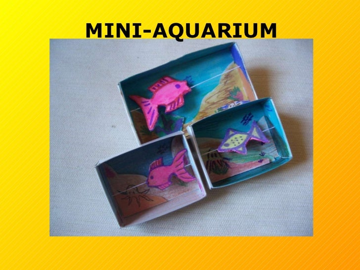 MINI-AQUARIUM