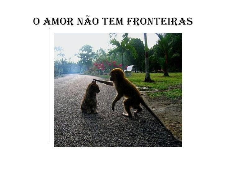 O AMOR NÃO TEM FRONTEIRAS