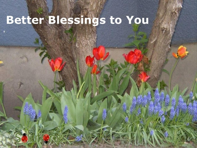 Better Blessings to You