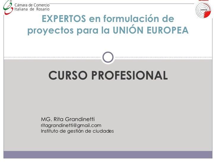 CURSO PROFESIONAL EXPERTOS en formulación de proyectos para la UNIÓN EUROPEA MG. Rita Grandinetti [email_address] Institut...