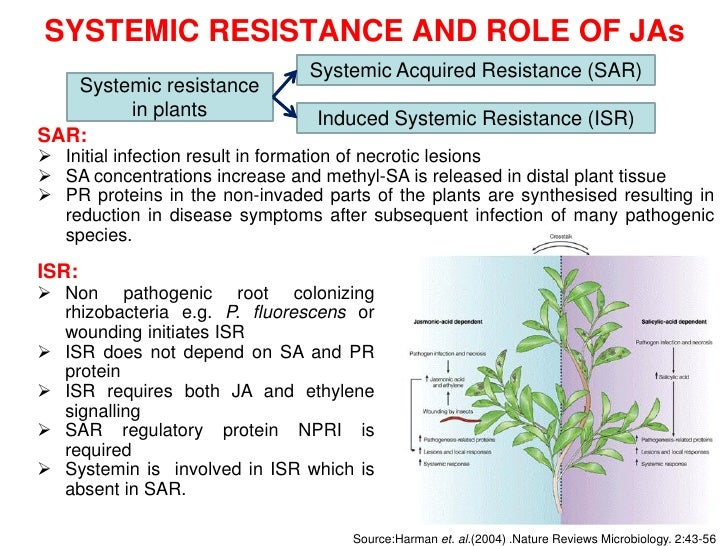 Jasmonates And Biotic Stress