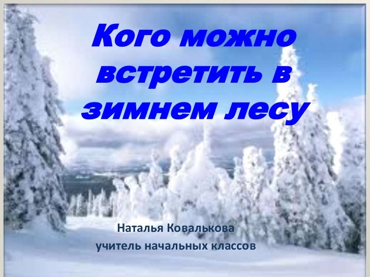 Кого можно встретить взимнем лесу   Наталья Ковальковаучитель начальных классов