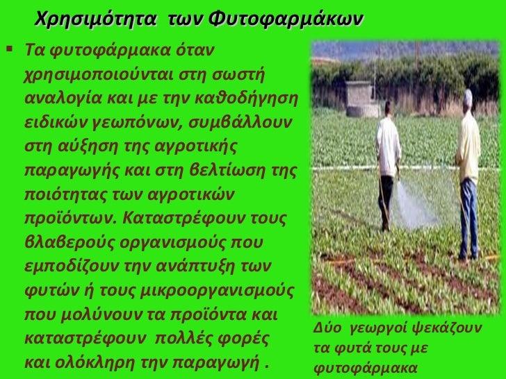 <ul><li>Τα φυτοφάρμακα όταν χρησιμοποιούνται στη σωστή αναλογία και με την καθοδήγηση ειδικών γεωπόνων, συμβάλλουν στη αύξ...