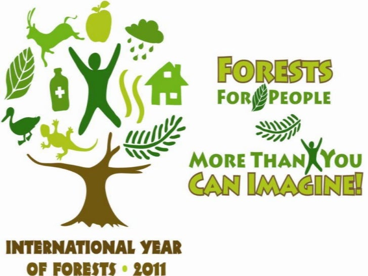 Free Essays on Forest Our Lifeline through - Essay Depot