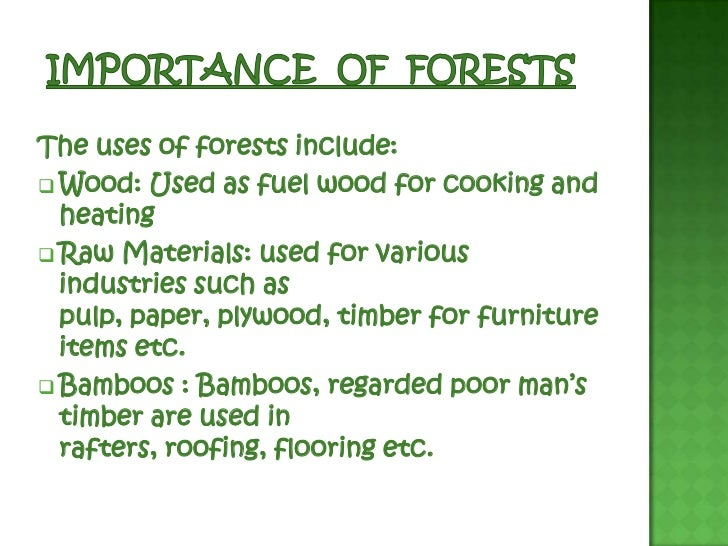 important of forest essay