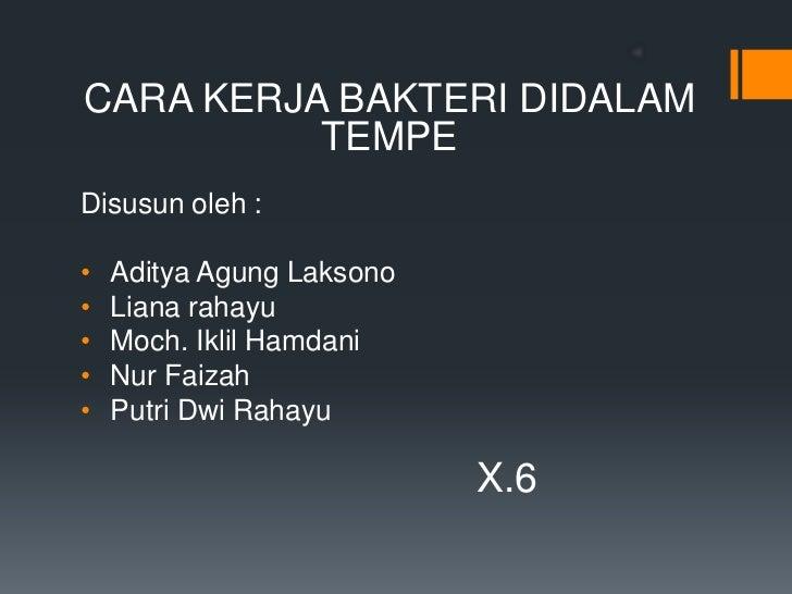 CARA KERJA BAKTERI DIDALAM          TEMPEDisusun oleh :•   Aditya Agung Laksono•   Liana rahayu•   Moch. Iklil Hamdani•   ...