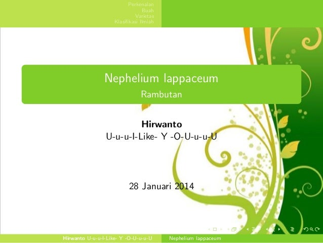 Perkenalan Buah Varietas Klasifikasi Ilmiah  Nephelium lappaceum Rambutan Hirwanto U-u-u-I-Like- Y -O-U-u-u-U  28 Januari 2...