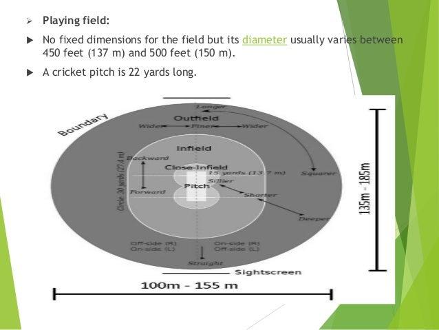 Presentation On The Literature And Case Study Of Cricket Stadium