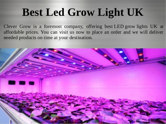Best Led Grow Light UK