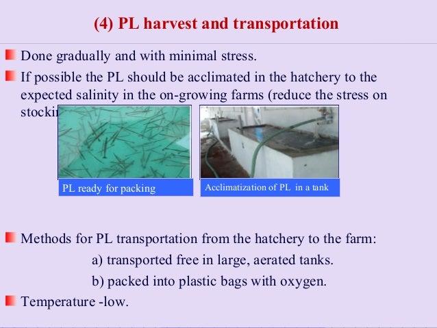 farm chemicals handbook 2013