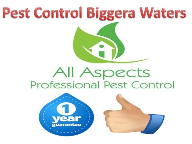 • All Aspects offers a wide range of services including: termite inspections/treatments, pre purchase inspections and gene...