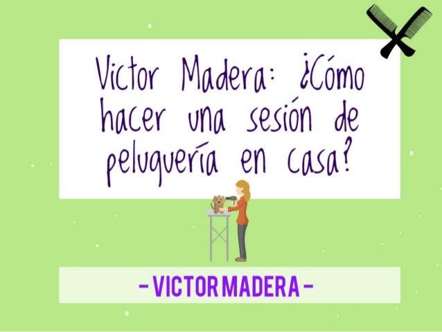 Consejos de Victor Madera: ¿Cómo hacer una sesión de peluquería en casa? Victor Madera Vet