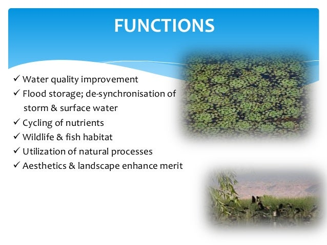 introduction to water treatment pdf