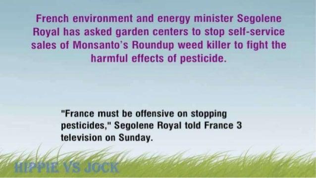 'Stop Over-The-Counter Sales Of Monsanto's Weed Killer' – French Minister, Segolene Royal To Garden Shops Slide 3