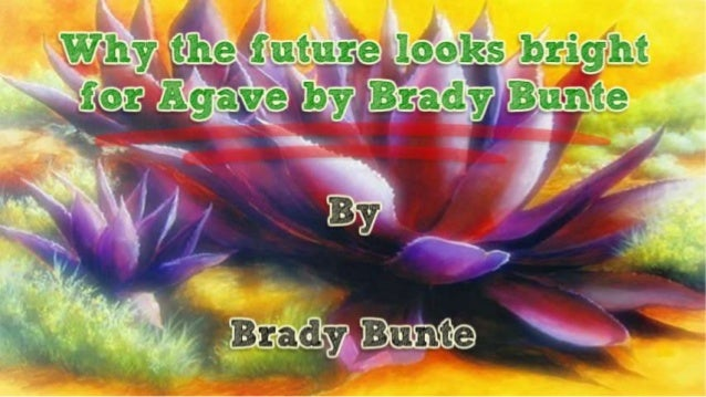 Why the future looks bright for Agave by Brady Bunte