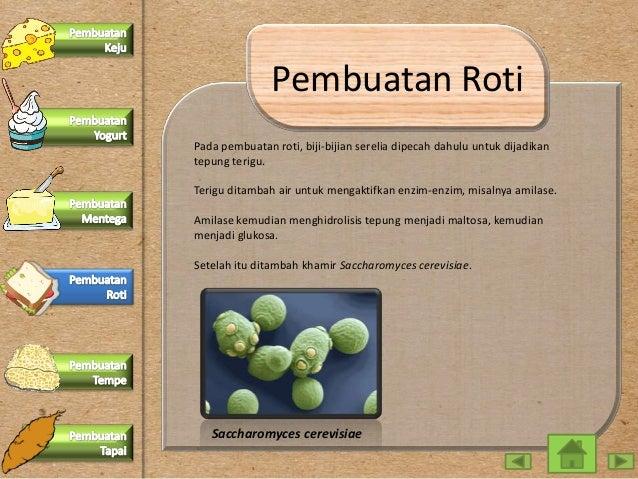Ppt Interaktif Bioteknologi Konvensional