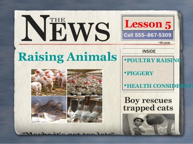 Lesson 5  Raising Animals  POULTRY RAISING PIGGERY  HEALTH CONSIDERATI