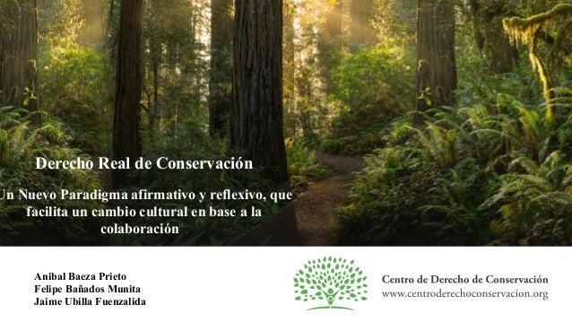 Derecho Real de Conservación Un Nuevo Paradigma afirmativo y reflexivo, que facilita un cambio cultural en base a la colab...