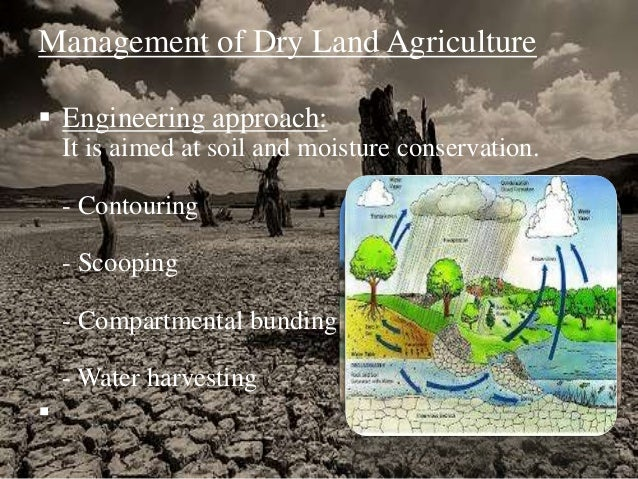 importance of agriculture in india Agricultural extension (also known as agricultural advisory services) plays a crucial role in promoting agricultural productivity, increasing food security, improving rural livelihoods, and promoting agriculture as an engine of pro-poor economic growth.