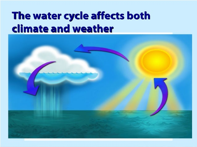 How Water Cycle Affects Weather Patterns 90