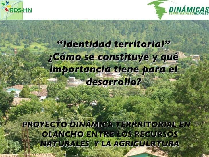 """"""" """" Identidad territorial"""" ¿Cómo se constituye y qué importancia tiene para el desarrollo? PROYECTO DINÁMICA TERRRITORIAL ..."""