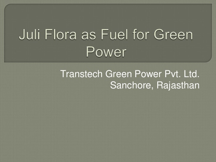 Juli Flora as Fuel for Green Power<br />Transtech Green Power Pvt. Ltd. Sanchore, Rajasthan<br />