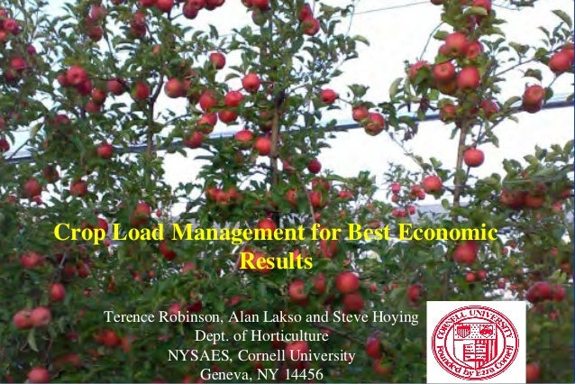 Crop Load Management for Best Economic Results Terence Robinson, Alan Lakso and Steve Hoying Dept. of Horticulture NYSAES,...