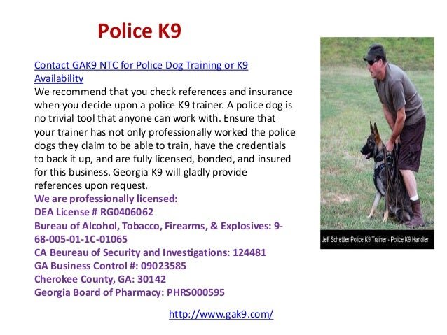 K Companion Service Dogs