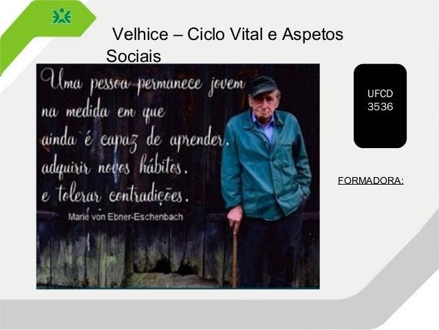 Velhice – Ciclo Vital e Aspetos Sociais UFCD 3536 FORMADORA: