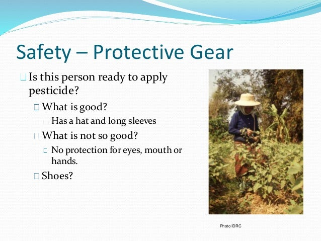 Safety – Protective Gear Is this person ready to apply pesticide? What is good? Has a hat and long sleeves What is not so ...