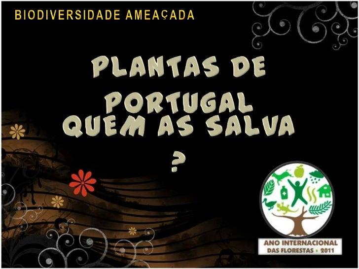 BIODIVERSIDADE AMEAÇADA <br />PLANTAS DE PORTUGAL<br />QUEM AS SALVA ?<br />