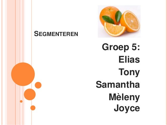 SEGMENTEREN Groep 5: Elias Tony Samantha Mèleny Joyce