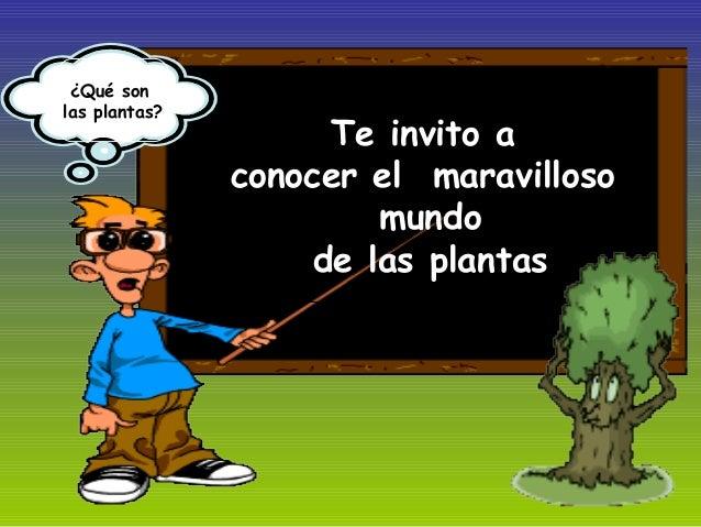 Te invito a conocer el maravilloso mundo de las plantas ¿Qué son las plantas?