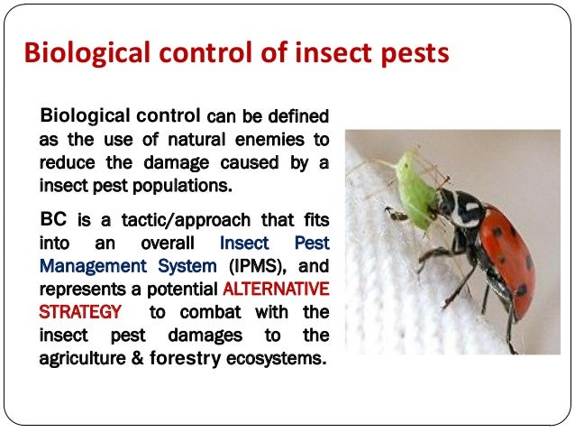 advantages and disadvantages of biological control Classical biological weed control involves the successful biological control biocontrol has many advantages but also some disadvantages advantages.