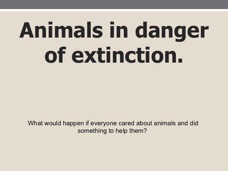 Animals in danger of extinction. What would happen if everyone cared about animals and did something to help them?