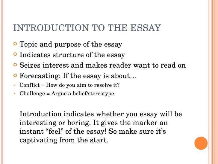 how to write a good essay  introduction to the essay
